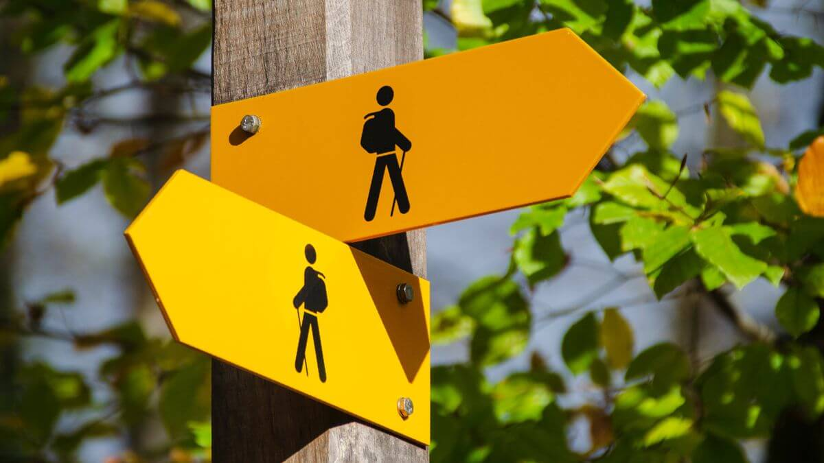 Yellow footpath signs pointing in different directions